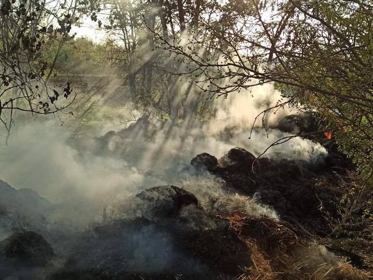 Хозпостройка, сено и 3 пожара на открытых территориях: что тушили в Николаевской области за сутки (ФОТО)
