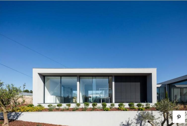 Можно только позавидовать: в Португалии открыли отель люкс для кошек и собак (ФОТО) 13