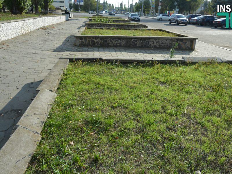 Общественный бюджет Николаева: Авторы «Атлетик Парка» добавят собственные деньги на реализацию проекта (ВИДЕО)