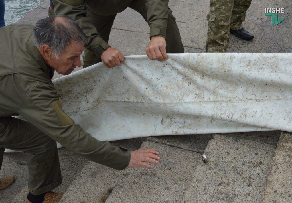Зарыбление в Николаеве: в Южный Буг выпустили 255 тыс. экземпляров рыб (ФОТО и ВИДЕО) 15