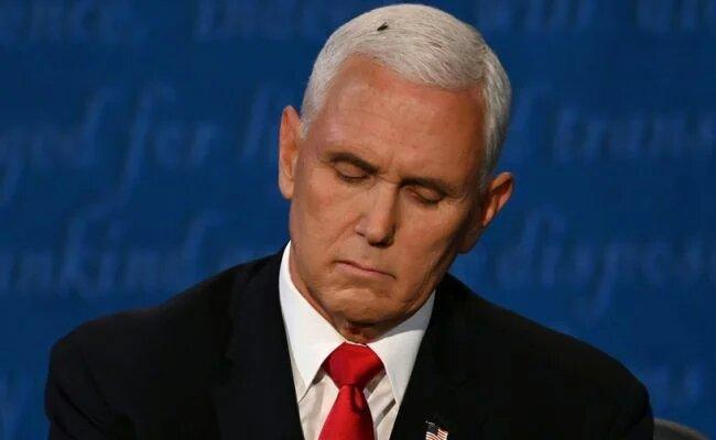 Дебаты вице-президентов в США: главной героиней стала муха, севшая на голову Пенсу (ФОТО, ВИДЕО)