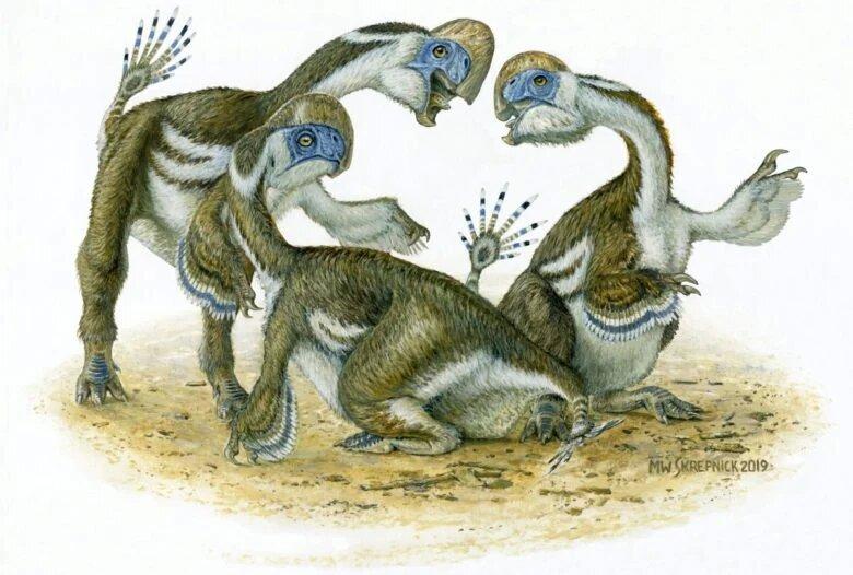 Ученые нашли новый вид динозавров: с перьями, клювом и двумя пальцами на передних конечностях (ФОТО)
