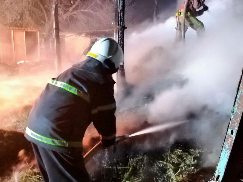 Горело жарко: спасатели Николаевщины больше двух часов тушили пожар сенника (ФОТО)