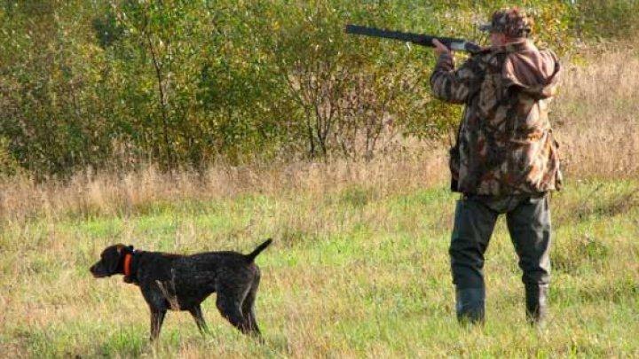 На Николаевщине участились случаи использования охотничьих собак без паспортов (ФОТО)
