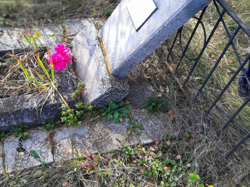 На Николаевщине задержали вандала, который разрушил могилы на кладбище