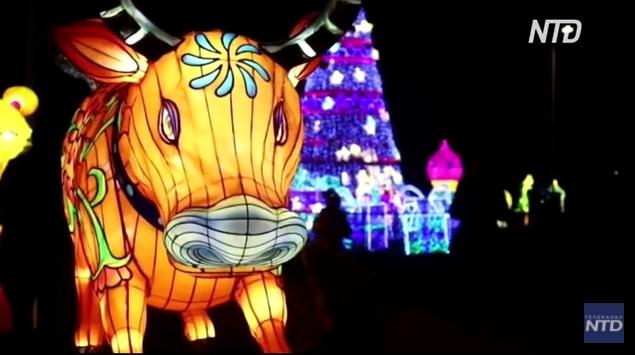 А фонари тоже могут фестивалить: в Таллине проходит фестиваль «Страна грез» (ВИДЕО)