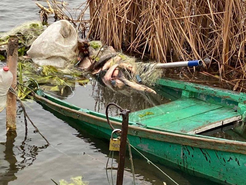 Упали и пропали. Возле Гурьевки исчезли рыбаки (ФОТО)