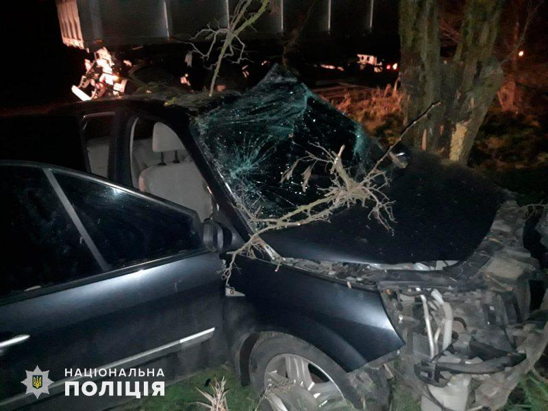 Под Николаевом Reno слетел с трассы и врезался в дерево: водитель и пассажирка в больнице (ФОТО)