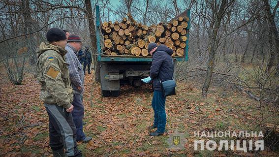 На Николаевщине поймали банду лесорубов (ФОТО, ВИДЕО)