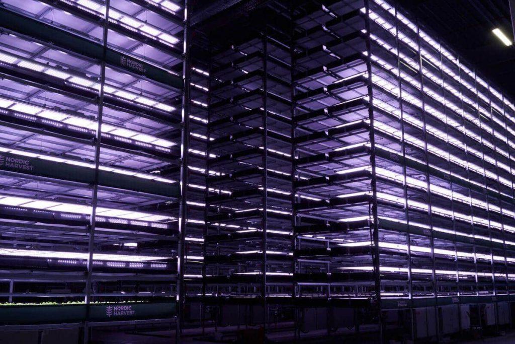 Крупнейшая в Европе вертикальная ферма открылась возле Копенгагена (ФОТО) 1