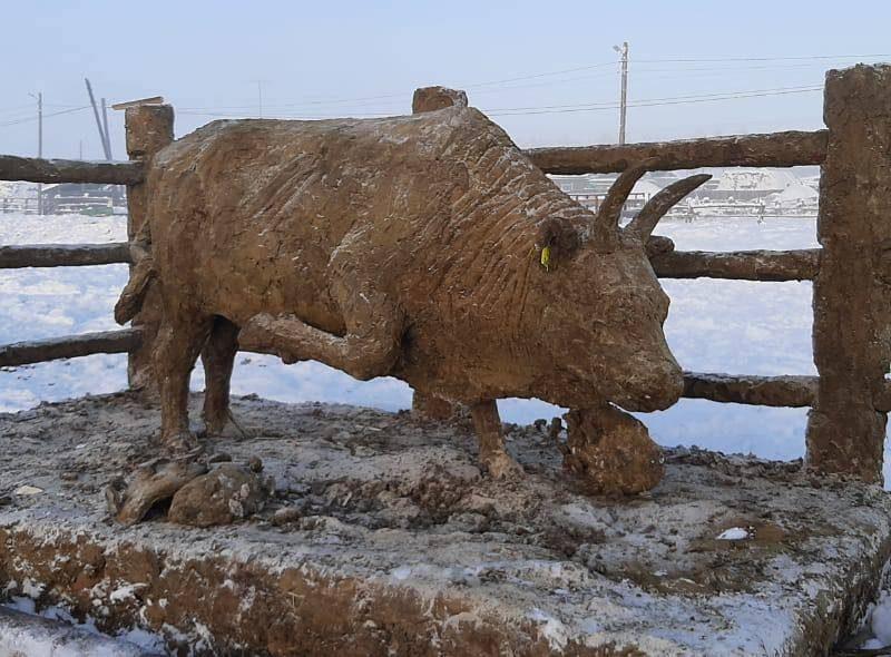 В Якутии слепили из навоза фигуру быка – и посвятили ее медикам (ВИДЕО)