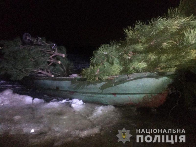Возле Сливино снова поймали браконьеров с соснами (ФОТО, ВИДЕО)