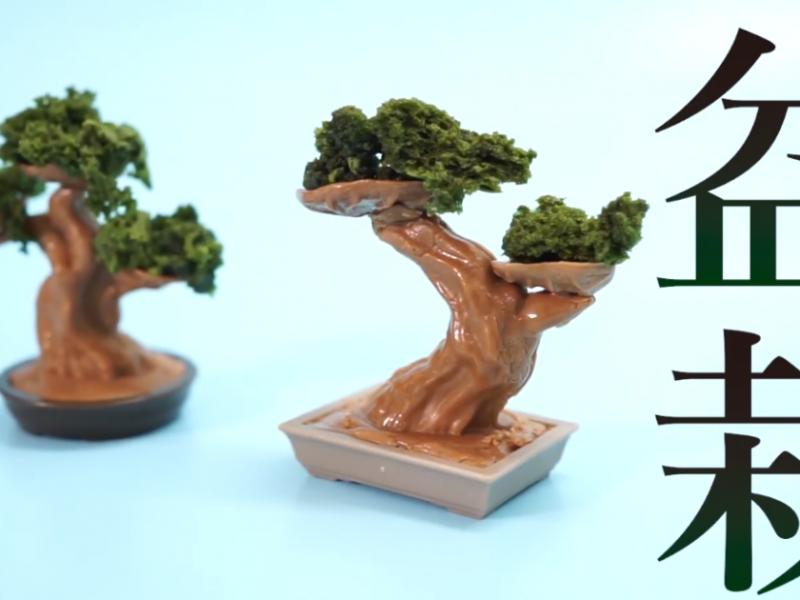 Вырастить и съесть: в Японии создали набор для шоколадных бонсаев (ВИДЕО)