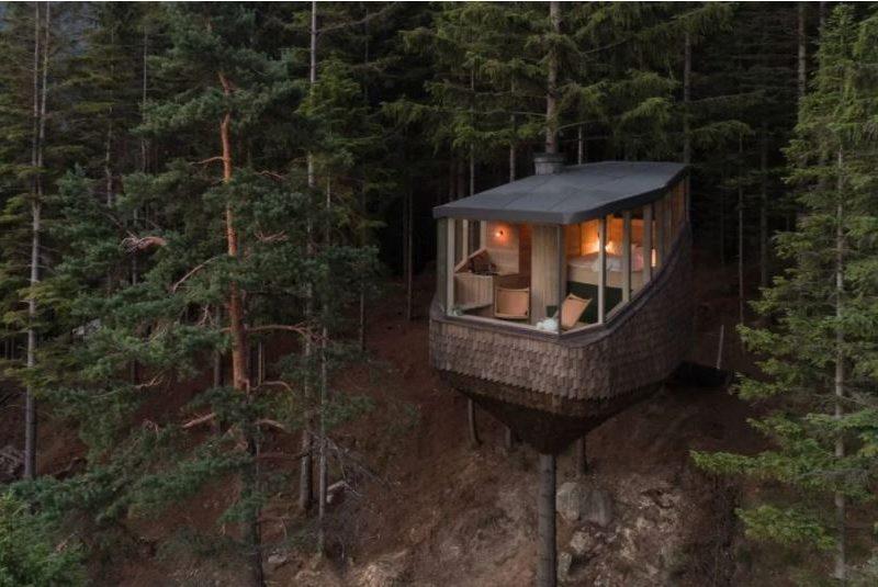 Норвежцы предлагают чудный отдых на природе – в доме на дереве (ФОТО)