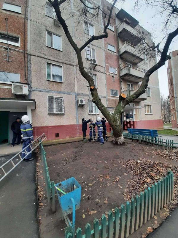 Новый год николаевские спасатели начали с добрых дел (ФОТО) 1