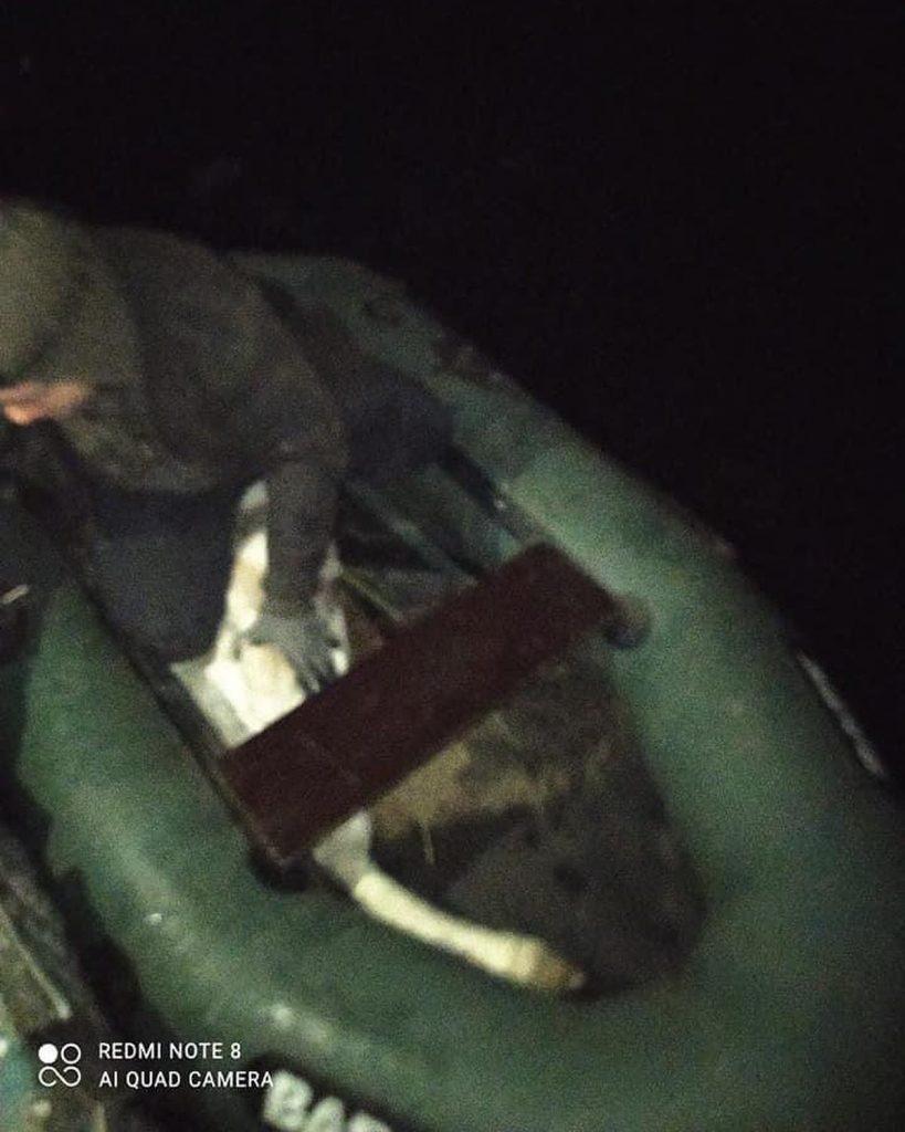 На Николаевщине спасли вмерзшего в лед лебедя 3