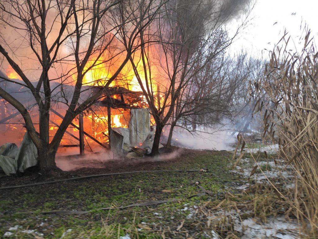 В Первомайске тушат летнее кафе на берегу реки - горит масштабно (ФОТО) 5