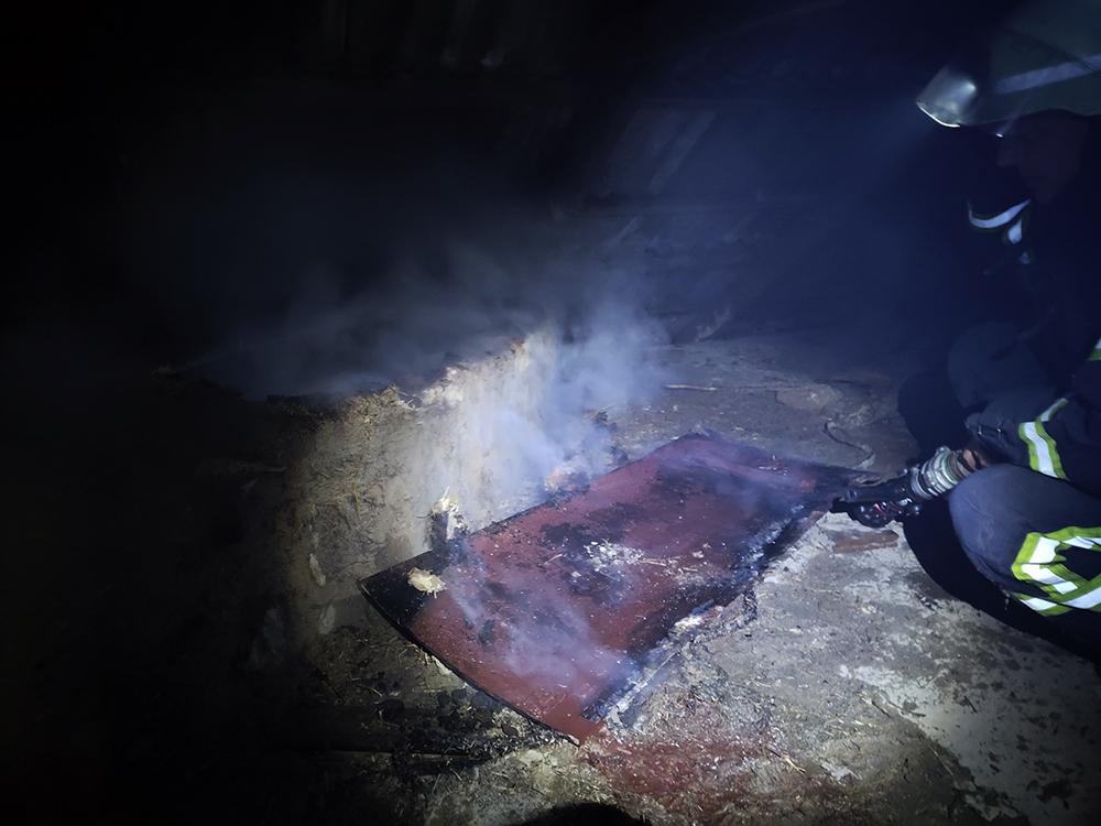 Из-за печек в Николаевской области трижды тушили пожары в жилье. В Витовском районе погибла 37-летняя женщина (ФОТО) 7