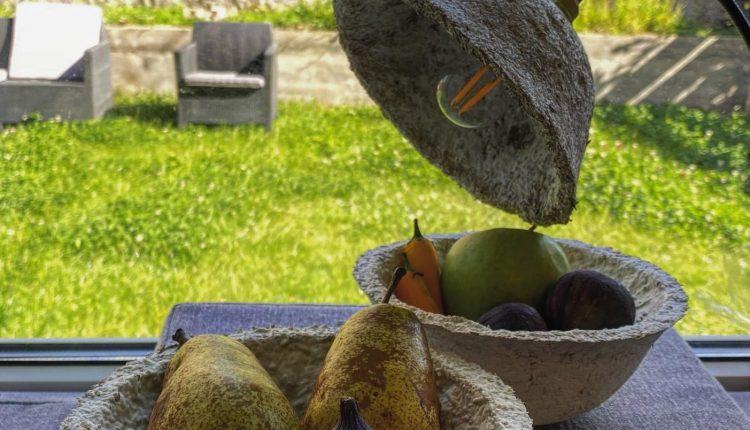 Из грибов и конопли. Украинцы предлагают миру новую эко-посуду (ФОТО) 3