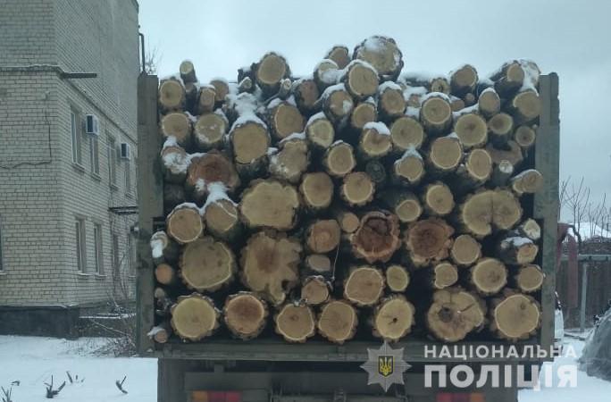 Говорит, вез со склада в Николаевской области: на Херсонщине задержали грузовик с 12 кубометрами акации (ФОТО)