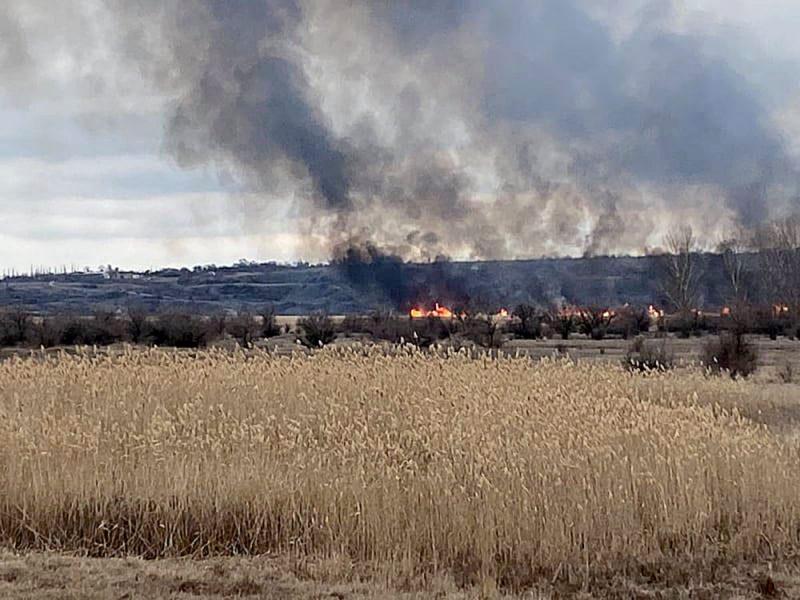 У Новопетровки на Николаевщине уже несколько часов горит 3 га камыша: спасатели раз за разом отбивают огонь от жилого сектора и леса (ФОТО)