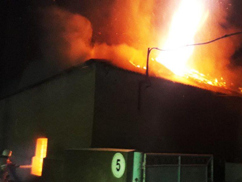 В Новой Одессе тушили цех по переработке подсолнечника – сгорело 8 тонн жмыха и линия по переработке (ФОТО)