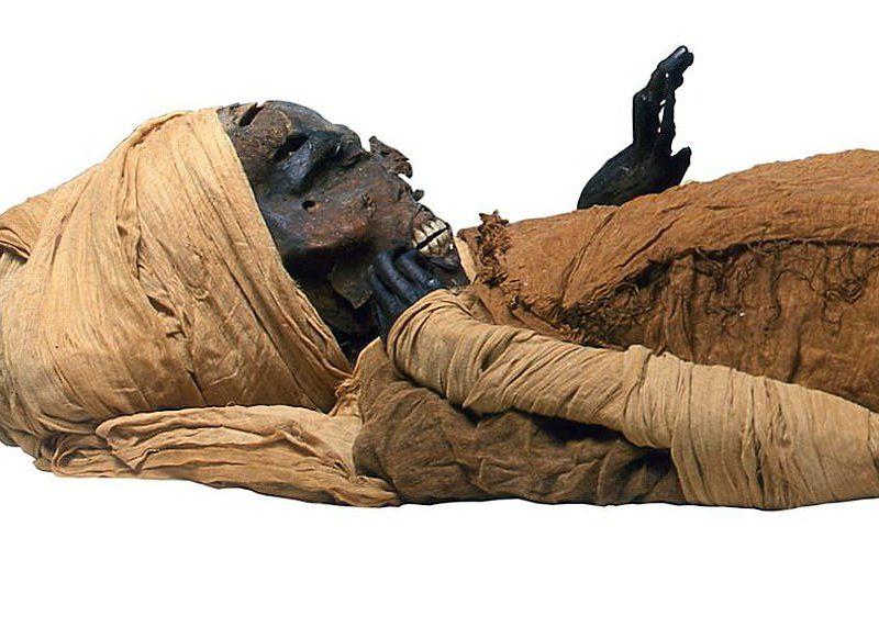 Погиб из-за бегемотов: археологи установили точные причины смерти египетского фараона (ФОТО)