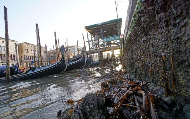 В Венеции после декабрьского наводнения пересохли каналы: что произошло (ВИДЕО)