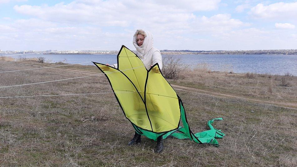 В небо над Николаевщиной запустили семиметровые тюльпаны (ФОТО) 1