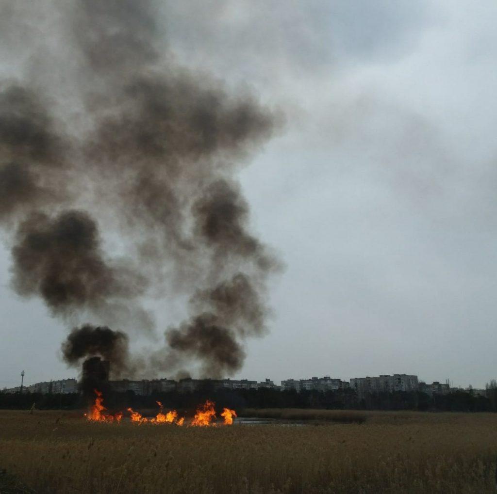 Опять поджоги: несколько раз тушили камыш на озере в парке «Лески» в Николаеве (ФОТО) 1