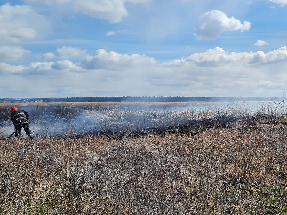 За сутки в Николаевской области выгорело более 8 га открытых территорий (ФОТО) 1