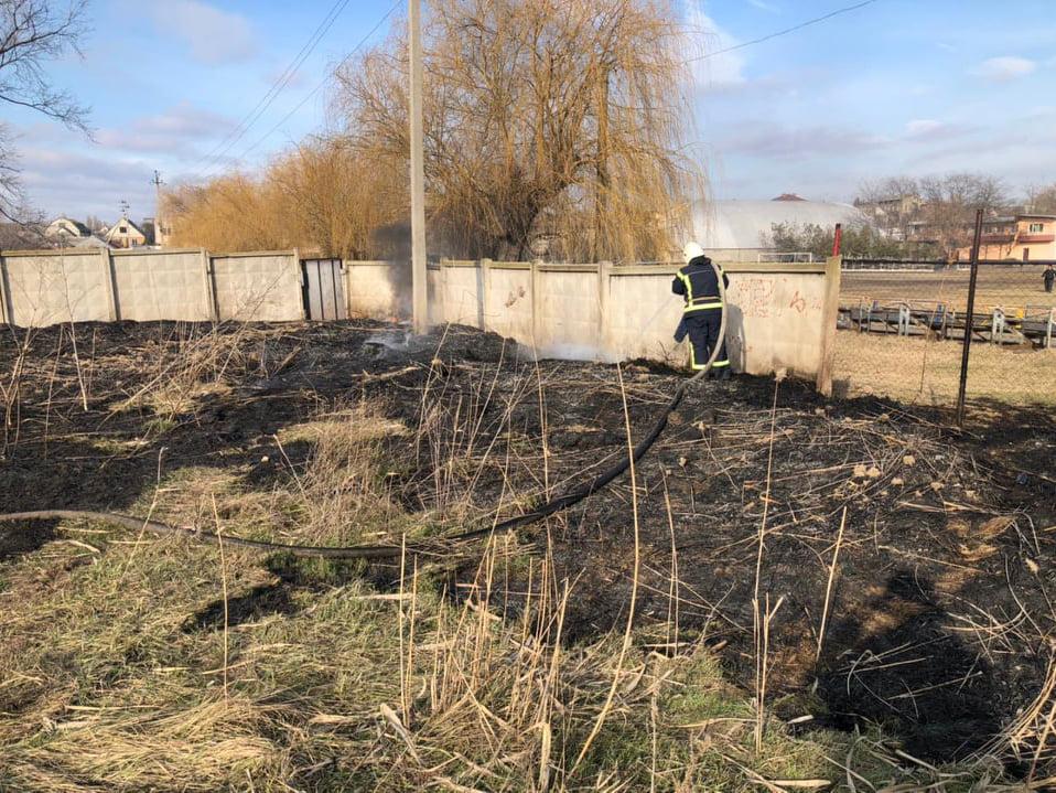 В Корабельном районе Николаева и у Матвеевки снова подожгли камыш - тушили спасатели (ФОТО) 1