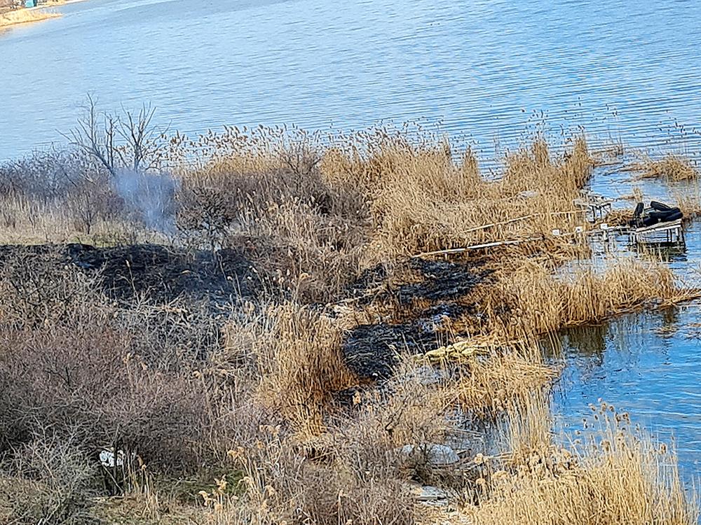 Опять жгут камыши. На Николаевщине выгорело свыше 6 га открытых территорий (ФОТО) 3