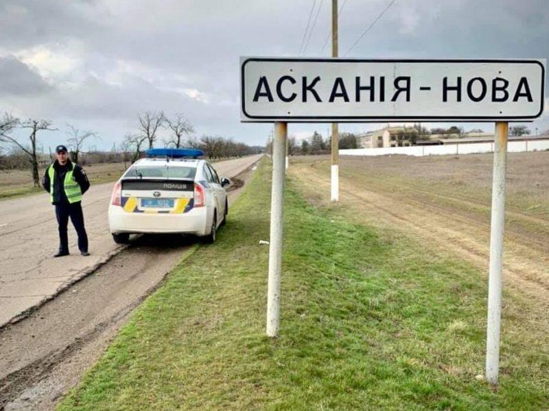 В Херсонской области погиб 61 журавль. Полиция открыла дело