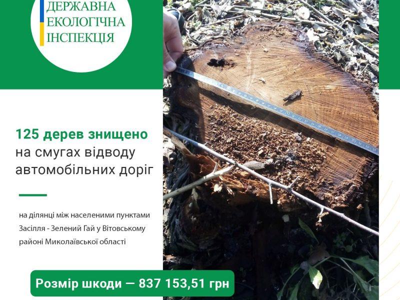 На Николаевщине уничтожено 125 деревьев между Засельем и Зеленым Гаем