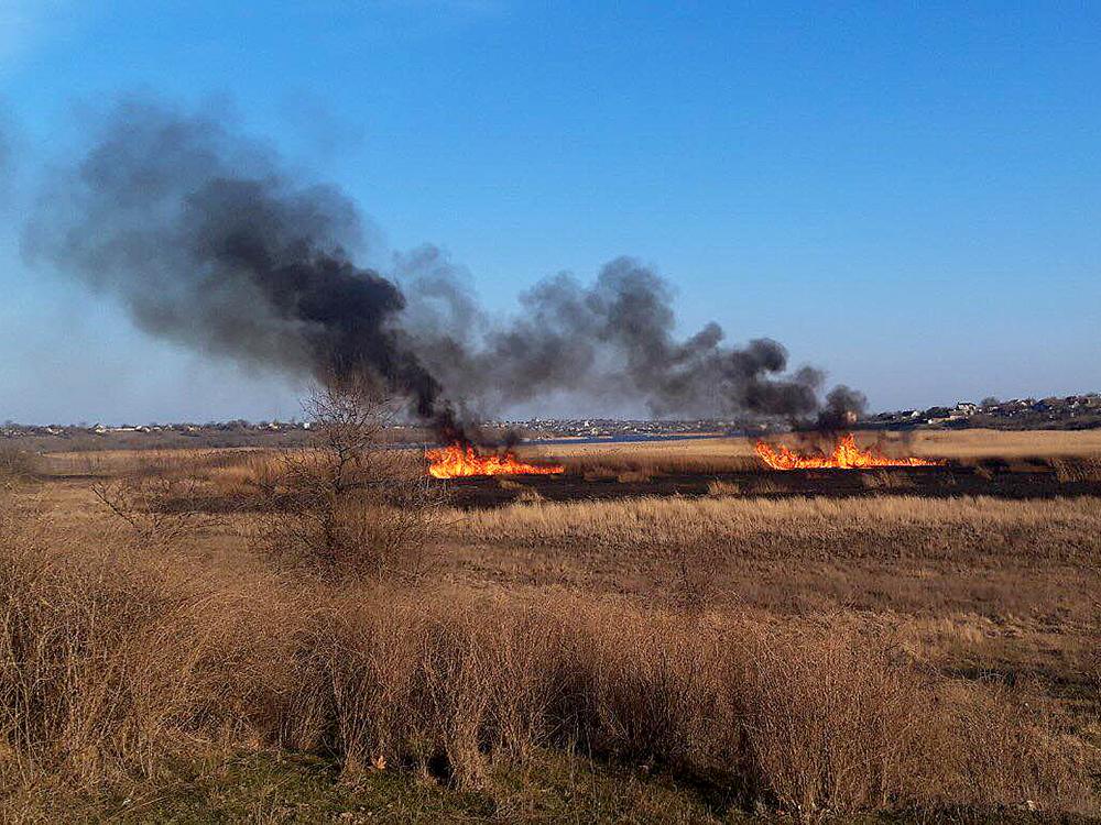 Опять поджоги: за сутки в Николаевской области выгорело 1,87 га открытых территорий (ФОТО) 3