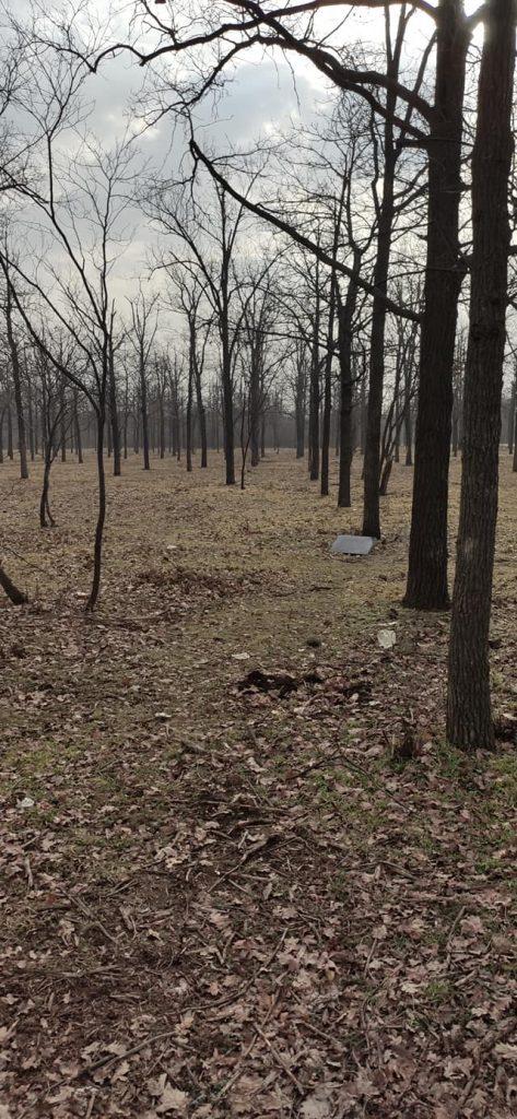 В Николаеве парк превращается в кладбище домашних животных (ФОТО) 3