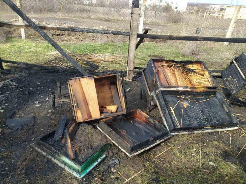 Пчел жалко. На Николаевщине неизвестные подожгли ульи (ФОТО)