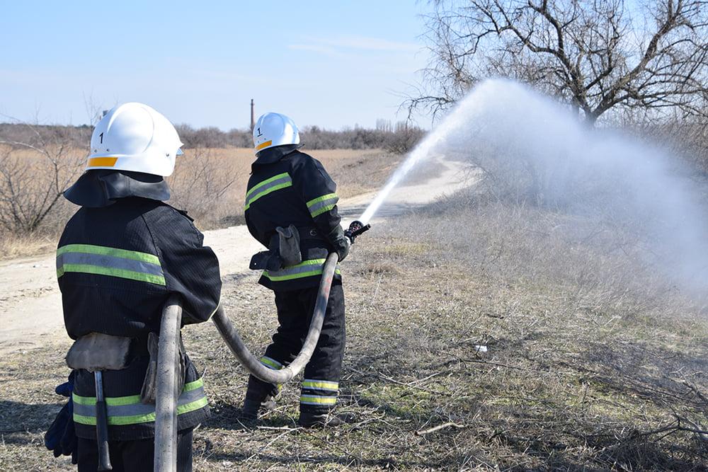 На Николаевщине выгорело 4 га камыша (ФОТО) 1