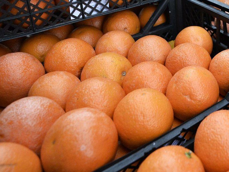 В Украину ввезли грейпфруты, обработанные  ядом. Есть их не советуют