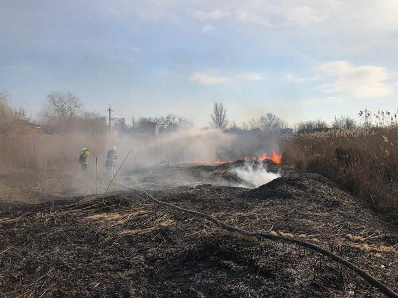 В Корабельном районе Николаева и у Матвеевки снова подожгли камыш — тушили спасатели (ФОТО)