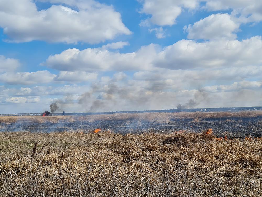 За сутки в Николаевской области выгорело более 8 га открытых территорий (ФОТО) 3