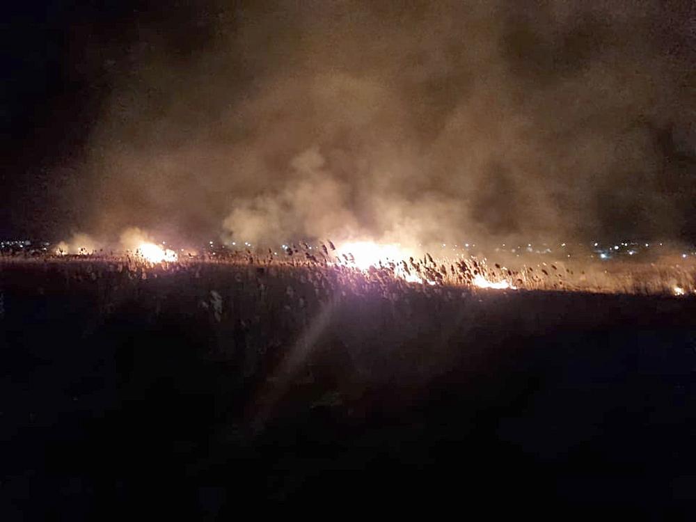 Опять поджоги: за сутки в Николаевской области выгорело 1,87 га открытых территорий (ФОТО) 5