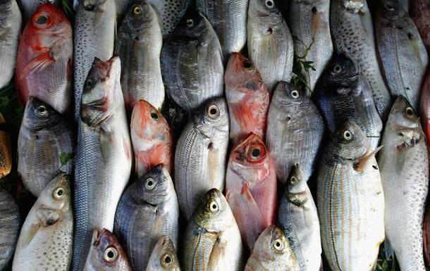 В 40% случаев в ресторанах и супермаркетах по всему миру продают фальсифицированные морепродукты
