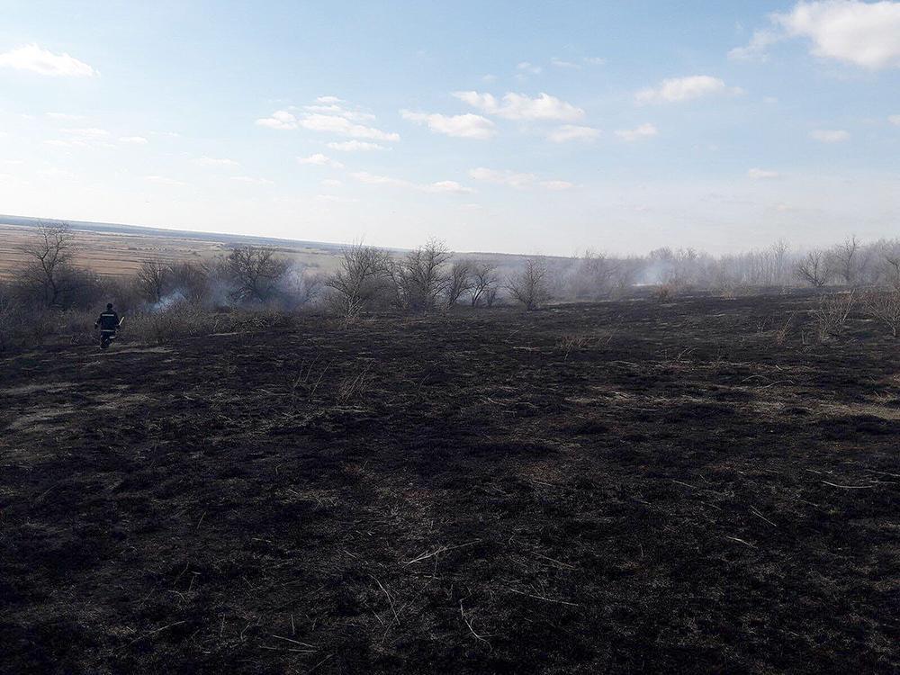 Опять поджоги: за сутки в Николаевской области выгорело 1,87 га открытых территорий (ФОТО) 7