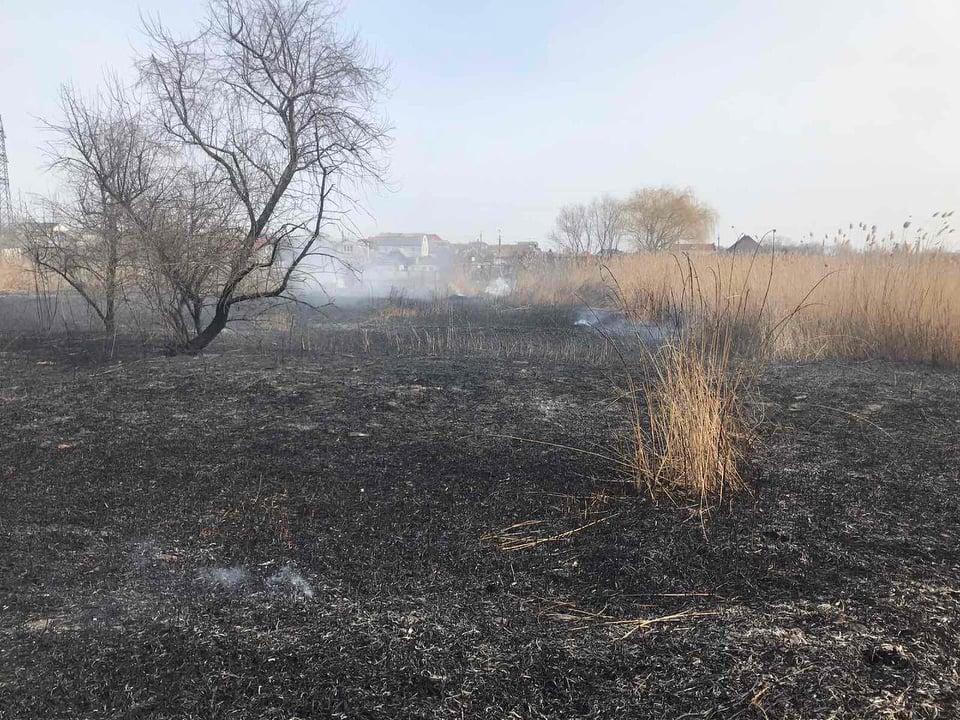 За сутки спасатели потушили 7 пожаров в экосистемах и хозпостройку (ФОТО) 5