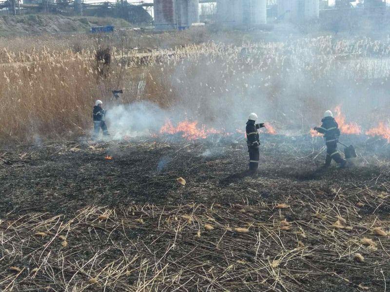 Снова поджог: на Намыве в Николаеве тушили камыши (ФОТО)