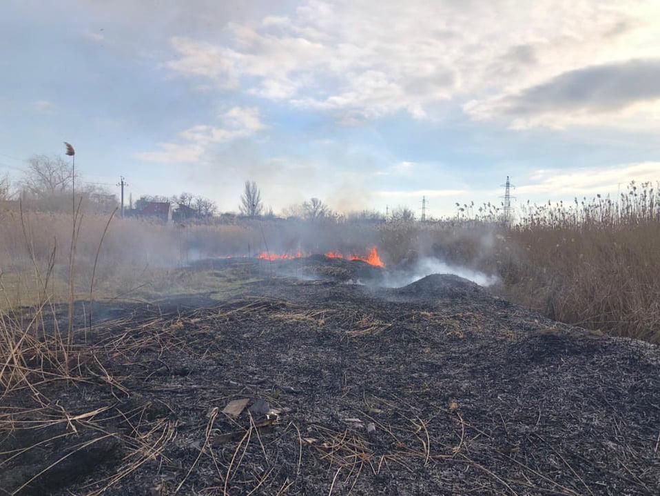 В Корабельном районе Николаева и у Матвеевки снова подожгли камыш - тушили спасатели (ФОТО) 7