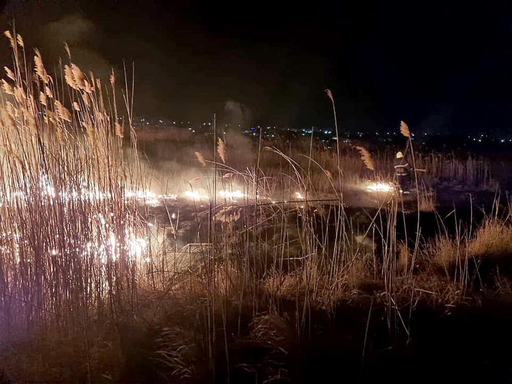 Опять поджоги: за сутки в Николаевской области выгорело 1,87 га открытых территорий (ФОТО) 11