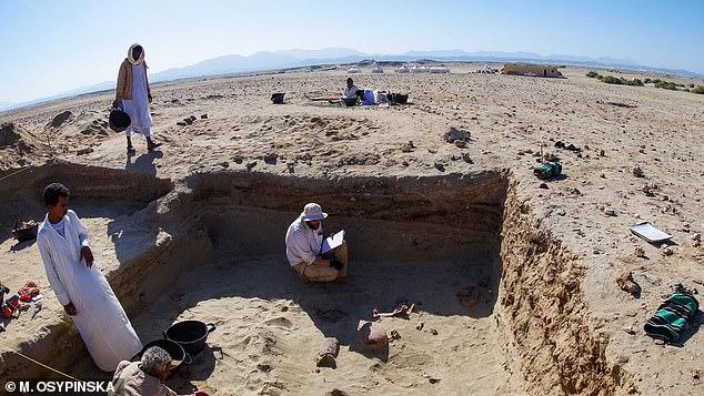 Они тоже их любили. В Египте обнаружили самое древнее кладбище домашних животных (ФОТО)